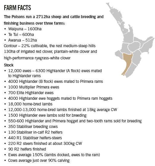 Don Farm Facts.png